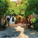 learning spanish in seville