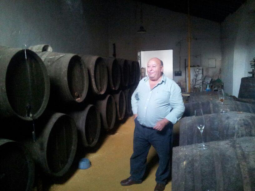Los vinos de Pepe