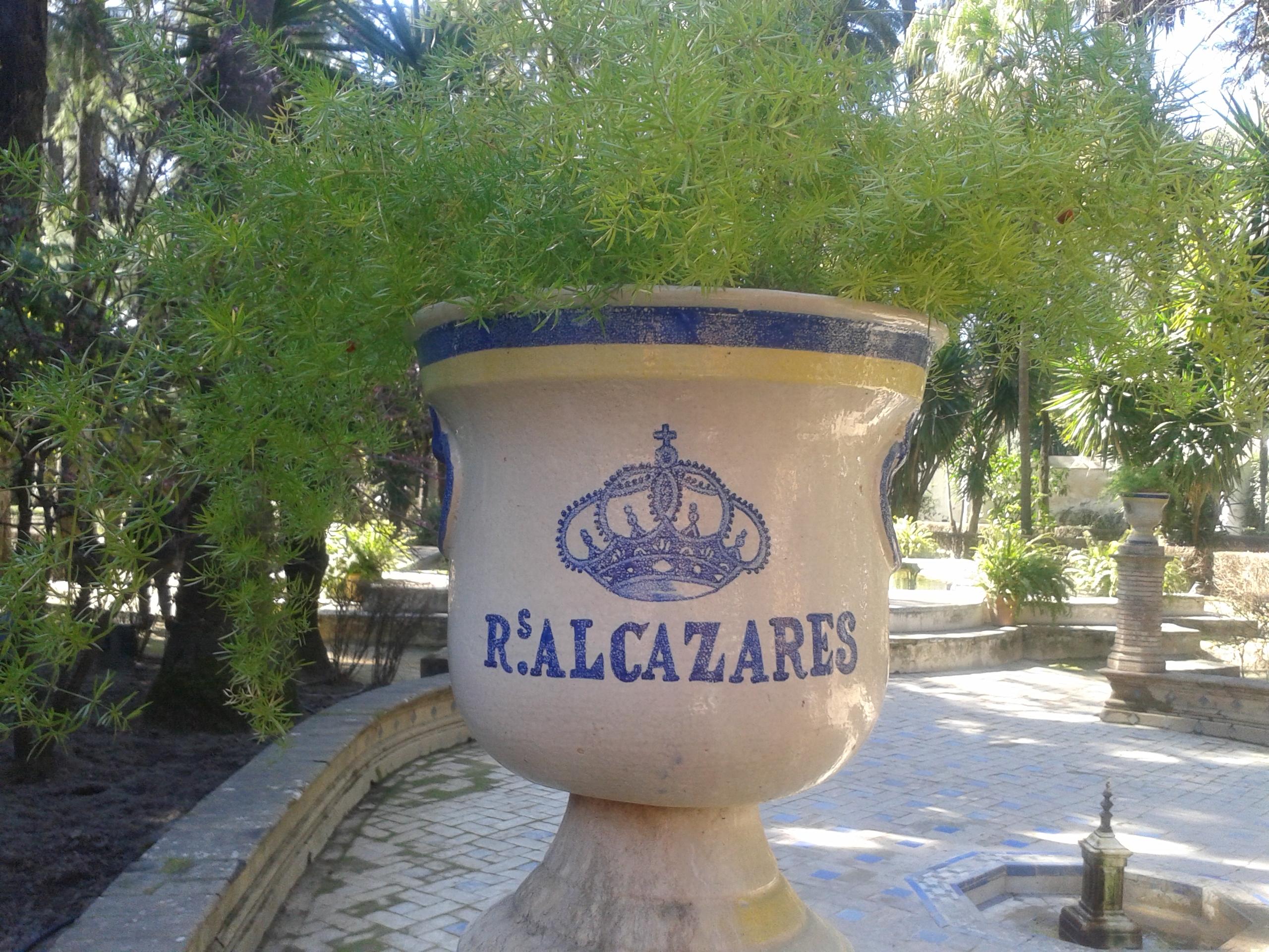 REALES ALCAZARES